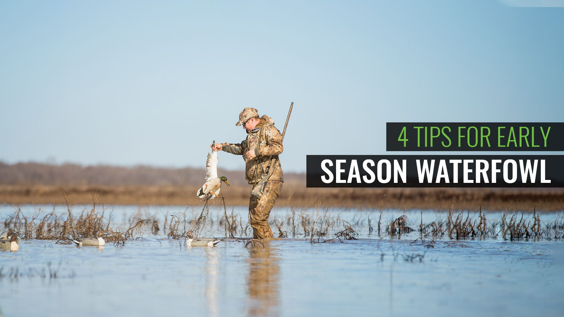 4 Must-Know Tips For This Duck Season